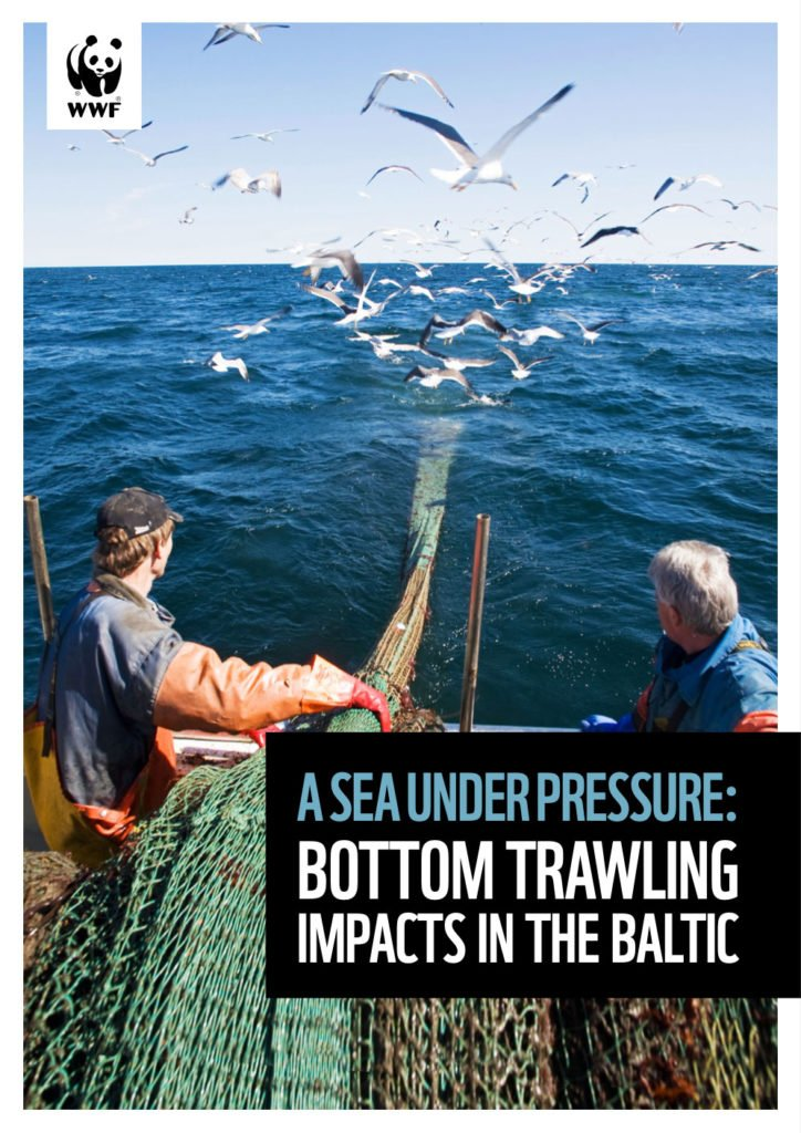 A sea under pressure: Bottom trawling impacts in the Baltic